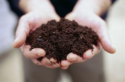 compost soil cape town